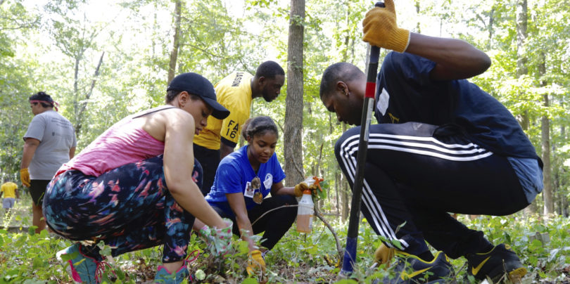UGA students work in Brooklyn Cemetery during UGA's Dawg Day of Service.