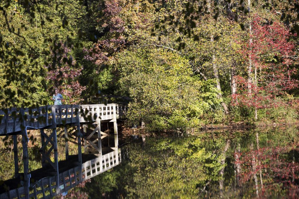 Lake Herrick bridge