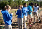 Clarke Middle Community Garden-h.group.env