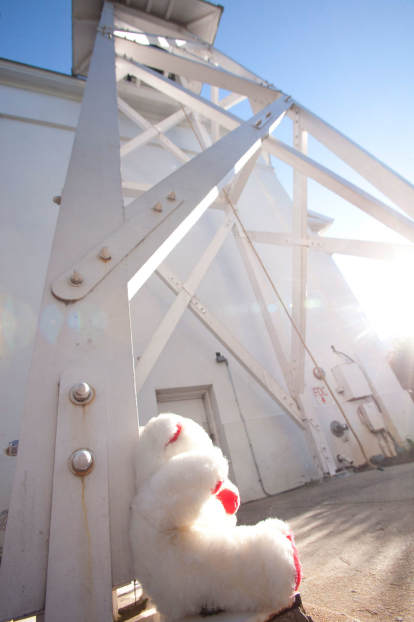 Chapel belling ringing for Sandy Hook victims 2012-teddy bear-v.action