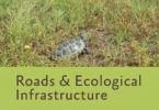Roads and Ecological Infrastructure Kimberly Andrews 2015-v.book