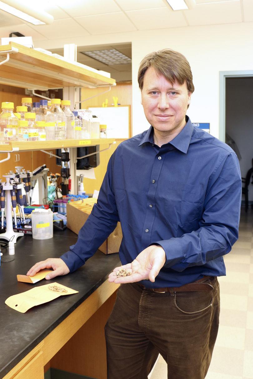 David Bertioli peanut genome 2016-v.photo