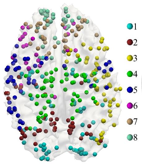 Liu Brain functional networks