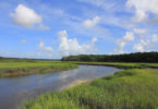 McIntosh County protecting natural areas Harris Neck Creek-h.env