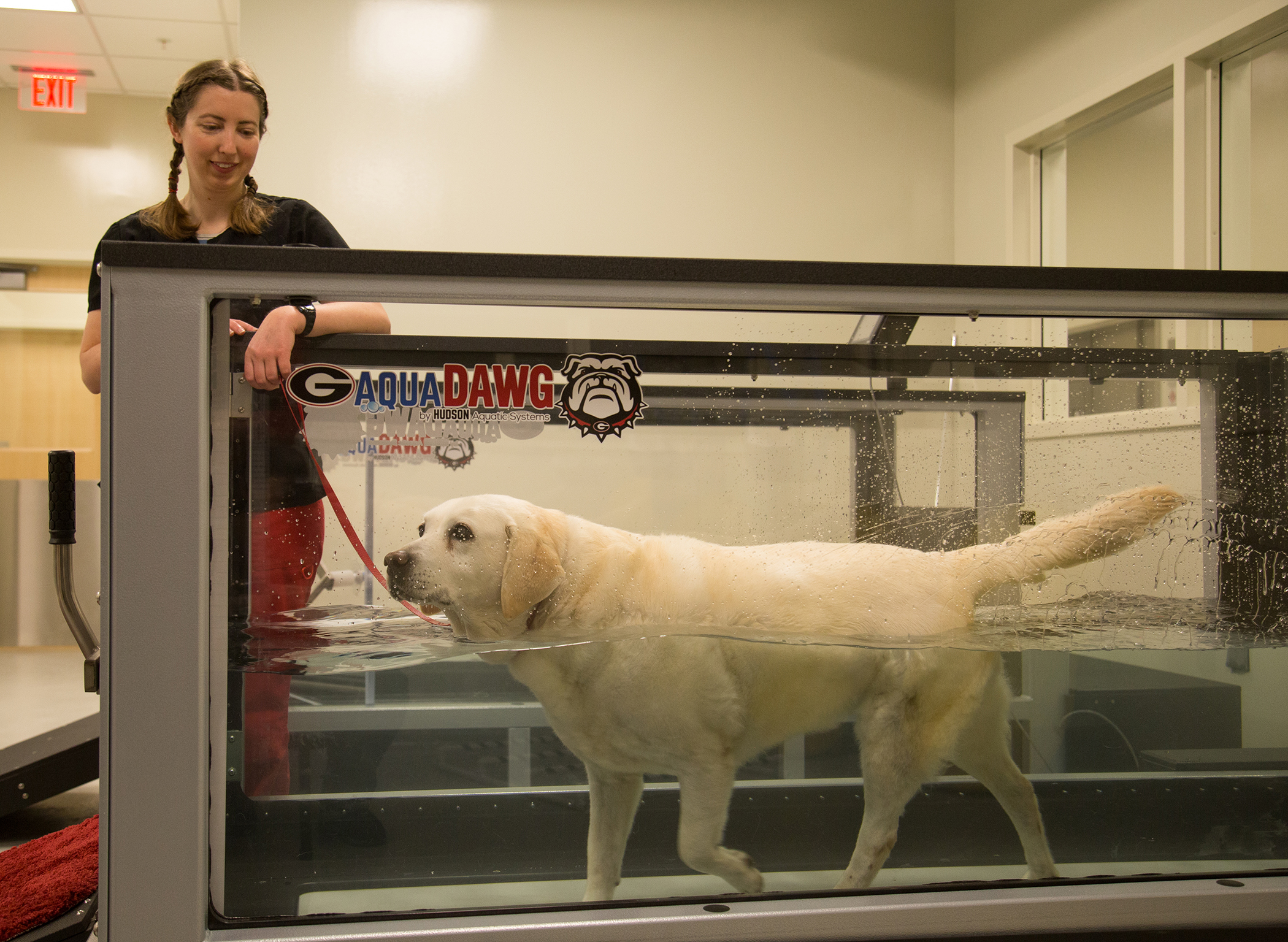 UGA Veterinary Teaching Hospital now open in new location - UGA Today