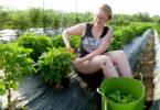 Organic farm tour Lauren Luscre-h.env