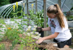 PSO Pollinator Program Moffett-h
