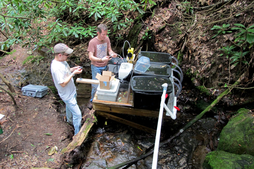 Rosemond ecosystems pump maintenance David Manning
