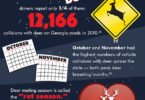 Deer mating season infographic-v.graphic