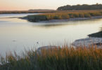 Sapelo Island research site