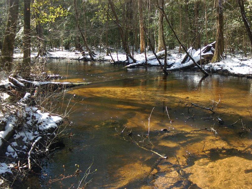Tinker Creek SREL-h.photo
