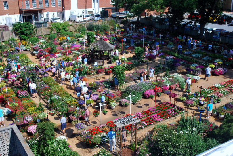 Trial Gardens open house 2012 - people in garden-h.env
