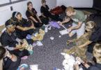 VetCAMP 2014 dog bandaging-h.photo