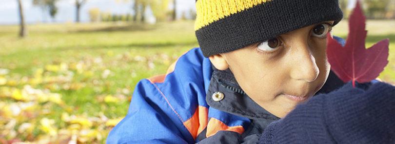 Environmental education study reveals outdoor awareness