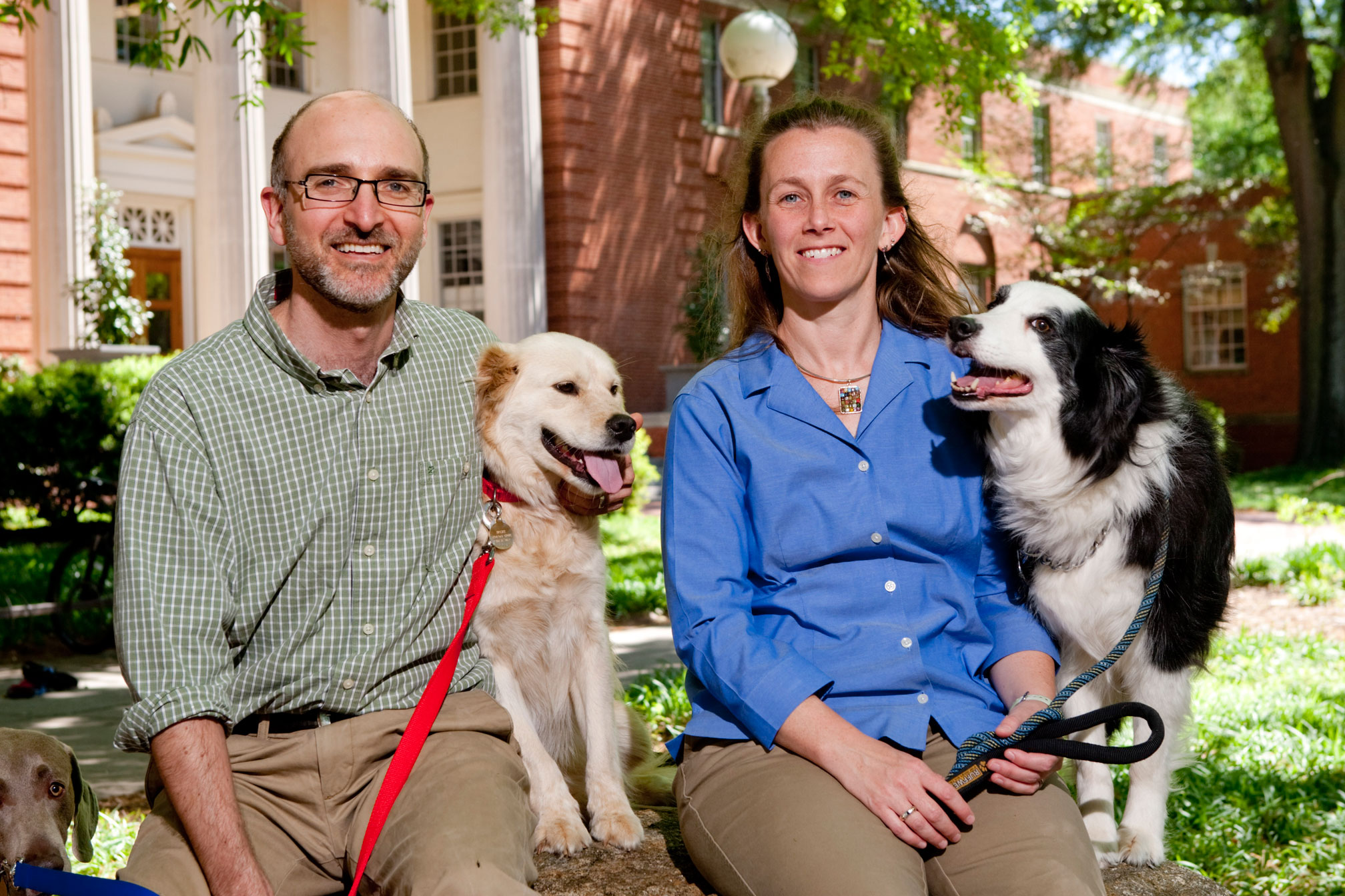 UGA research finds sterilized dogs live longer - UGA Today