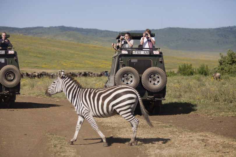 experiential learning study abroad zebra-h