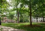 North Campus Trees