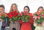 Poinsettia sale 2014 Maya Baumeister