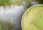 Rethinking groundwater contamination