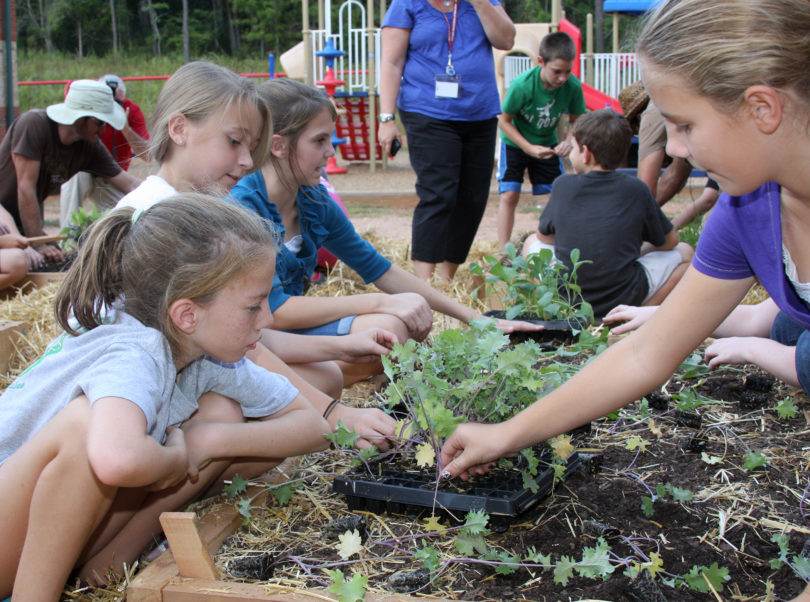 School garden students at High Shoals Elementary School-h.group