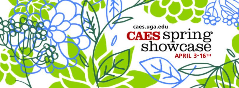 CAES Spring Showcase 2015 logo-h.photo