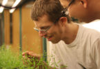 Scientists examining plants