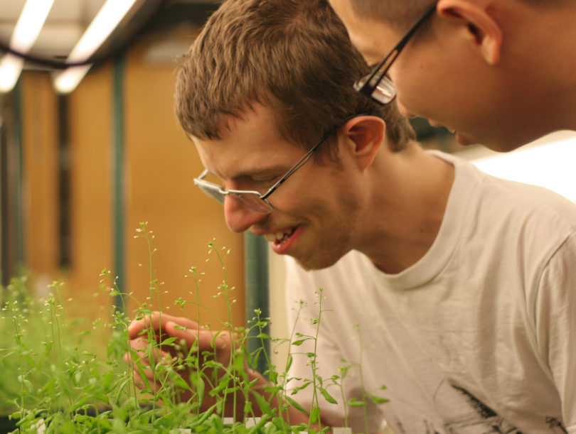 Scientists examining plants