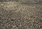 Soil drought and Famine