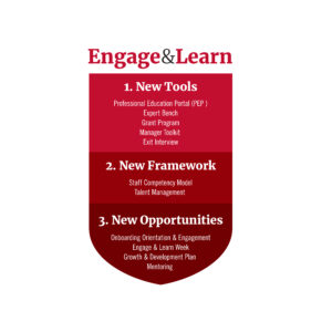 Different phases of how Engage & Learn will help staff in their development.