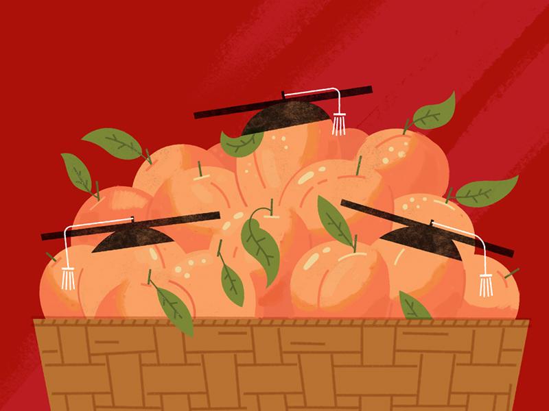 peaches with graduation caps illustration