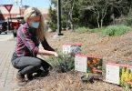 Lauren Muller helps install plants