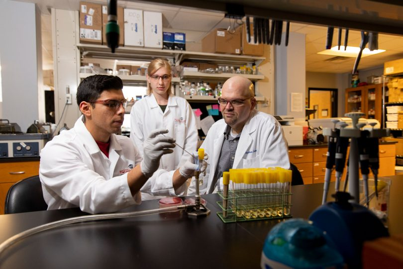 Students working with professor Stephen Trent in a lab.