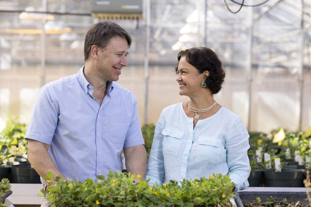 David Bertioli and his wife, Soraya Leal-Bertioli, pose in their greenhouse.