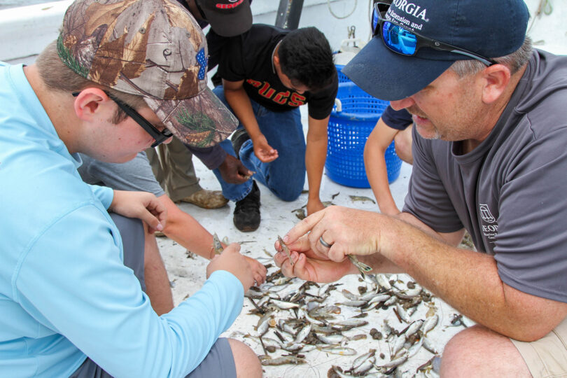 Bryan Fleuch shows students how to identify and sort shrimp