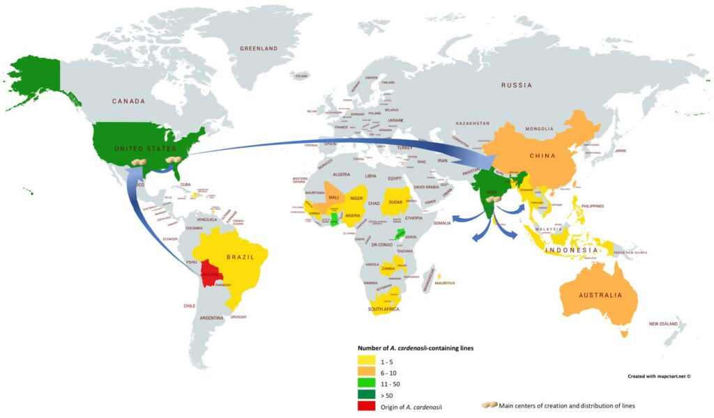 Map showing routes the peanut gene used to move around the world.